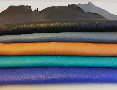 5 NEW TM colors